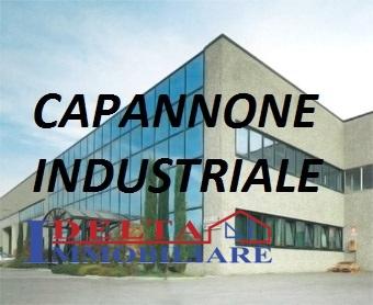 Ufficio / Studio in affitto a Rosignano Marittimo, 4 locali, prezzo € 1.350 | CambioCasa.it